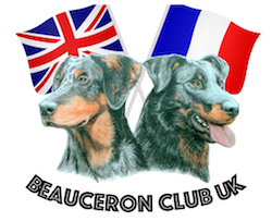 Results of the First Beauceron Club UK Open Show 17th September 2017